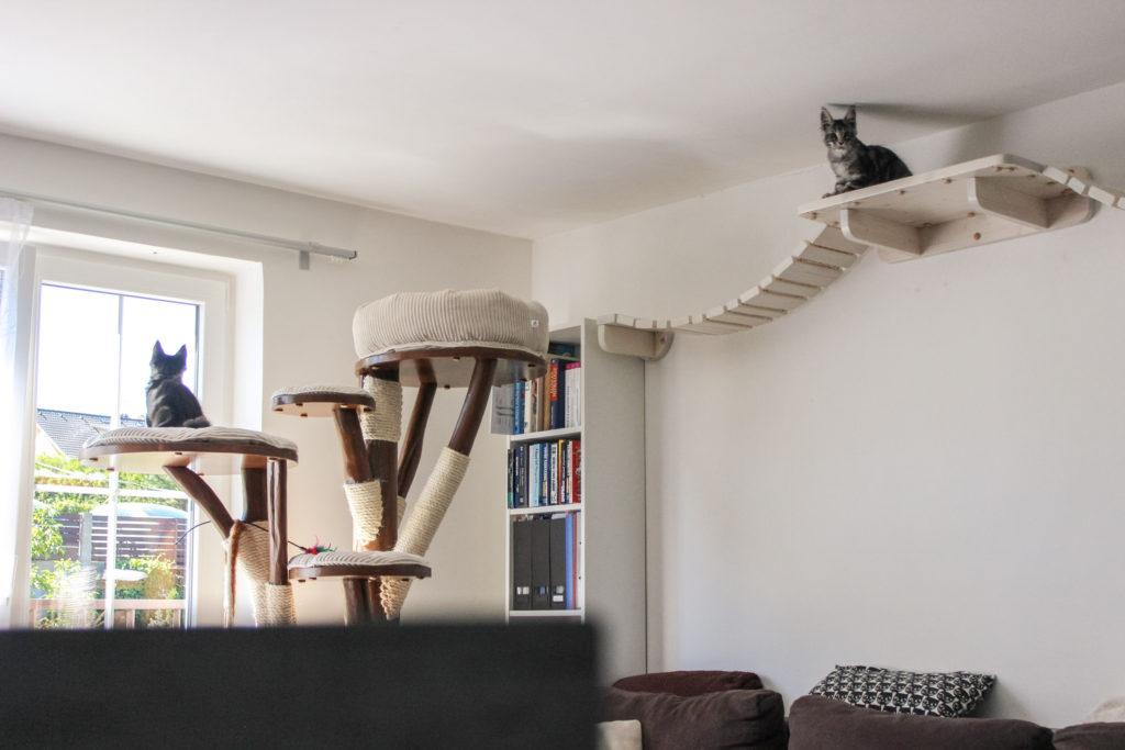 Kočičí strom a lávka pro kočky woodkocoura